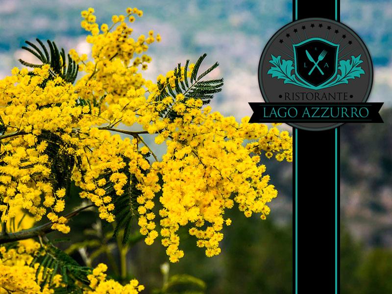 mimosa-festa-della-donna_ristorante-lago-azzurro